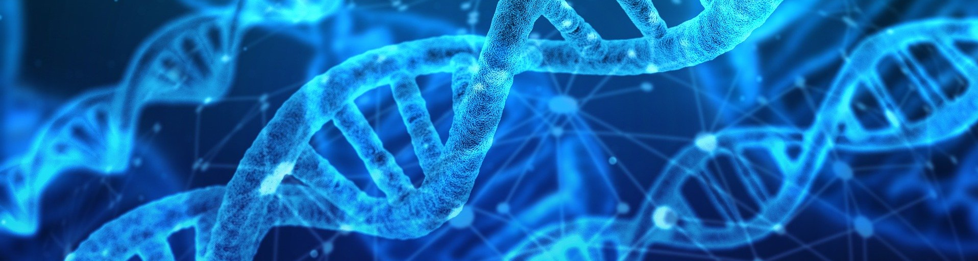 Organisational data DNA